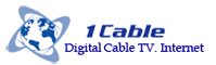 1 Cable